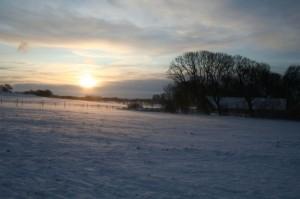 Gården en snömorgon i december
