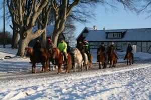 Avgång från gården - glada hästar och ryttare