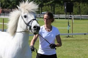 """Kristall och Kristine i """"arbete för hand"""" på Hästens Dag 2010"""