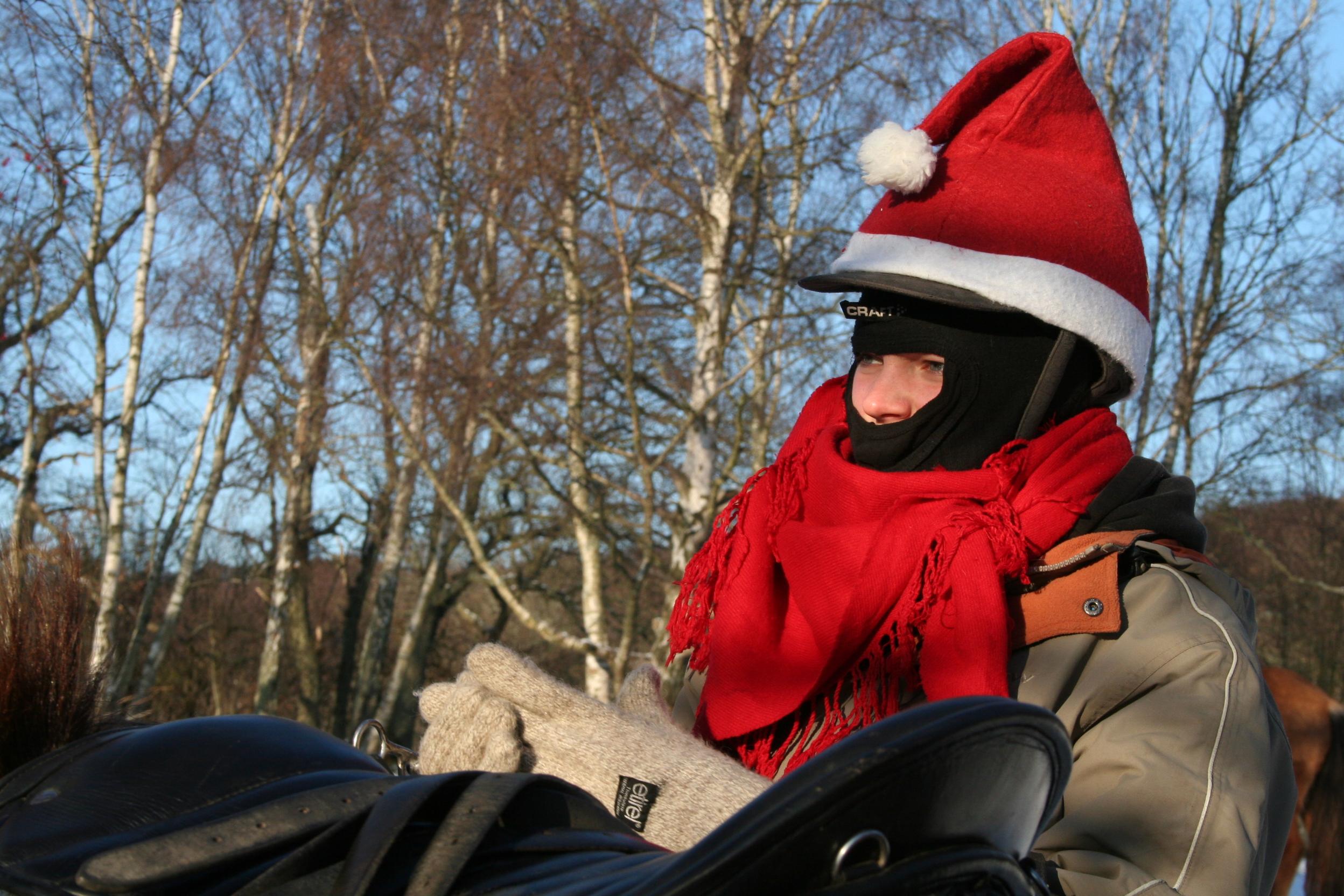 Tomte på jultur